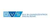 Logo: GSI SLV